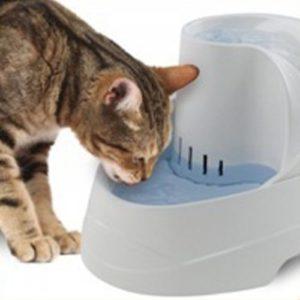 כלי שתייה לחתולים וכלבים- וגה