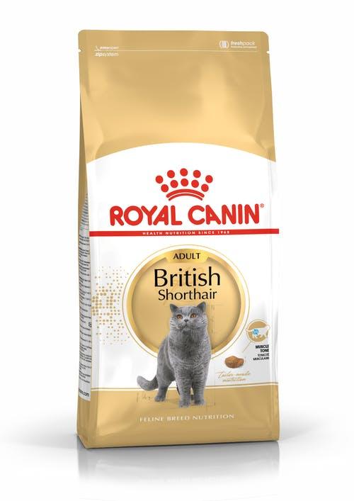 """royal canin- מזון יבש חתול בריטי - 4 ק""""ג"""