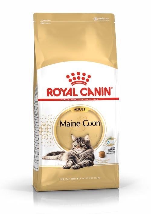 "royal canin- מזון יבש חתול מיין קון - 4 ק""ג"