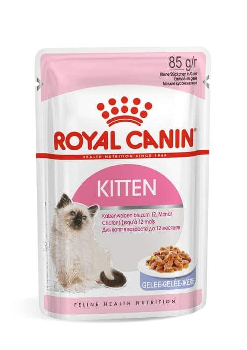 royal canin- פאוץ לחתול גור