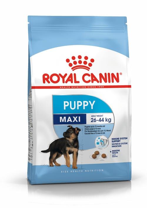 """royal canin- מזון יבש כלבים גורים גזע גדול 15 ק""""ג"""